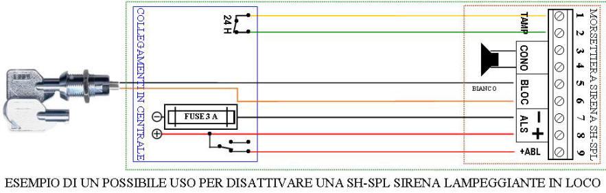 Schema Elettrico Sirena Autoalimentata : Ss slf sirena lampeggiante antifurto via radio zone