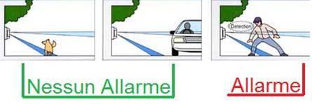 Diagramma Rilevatore Infrarosso Esterno Securvera